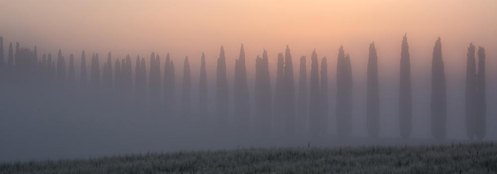 Tuscany Fog Italy