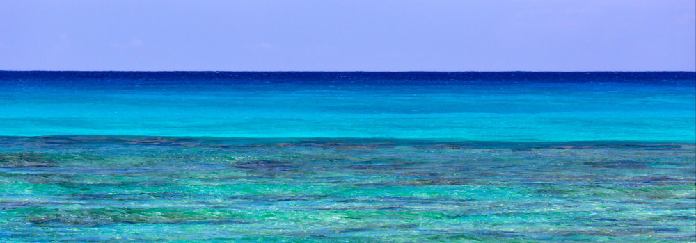 Waikiki Blues