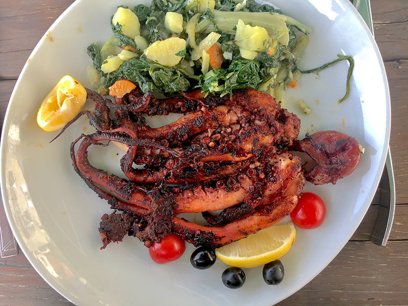 Octopus for lunch